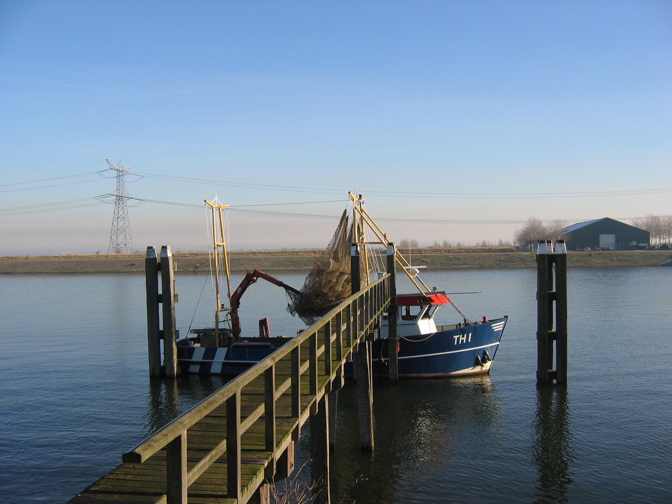 NetVISwerk: Het regeerakkoord biedt kansen voor de ambachtelijke kust- en binnenvisserij.