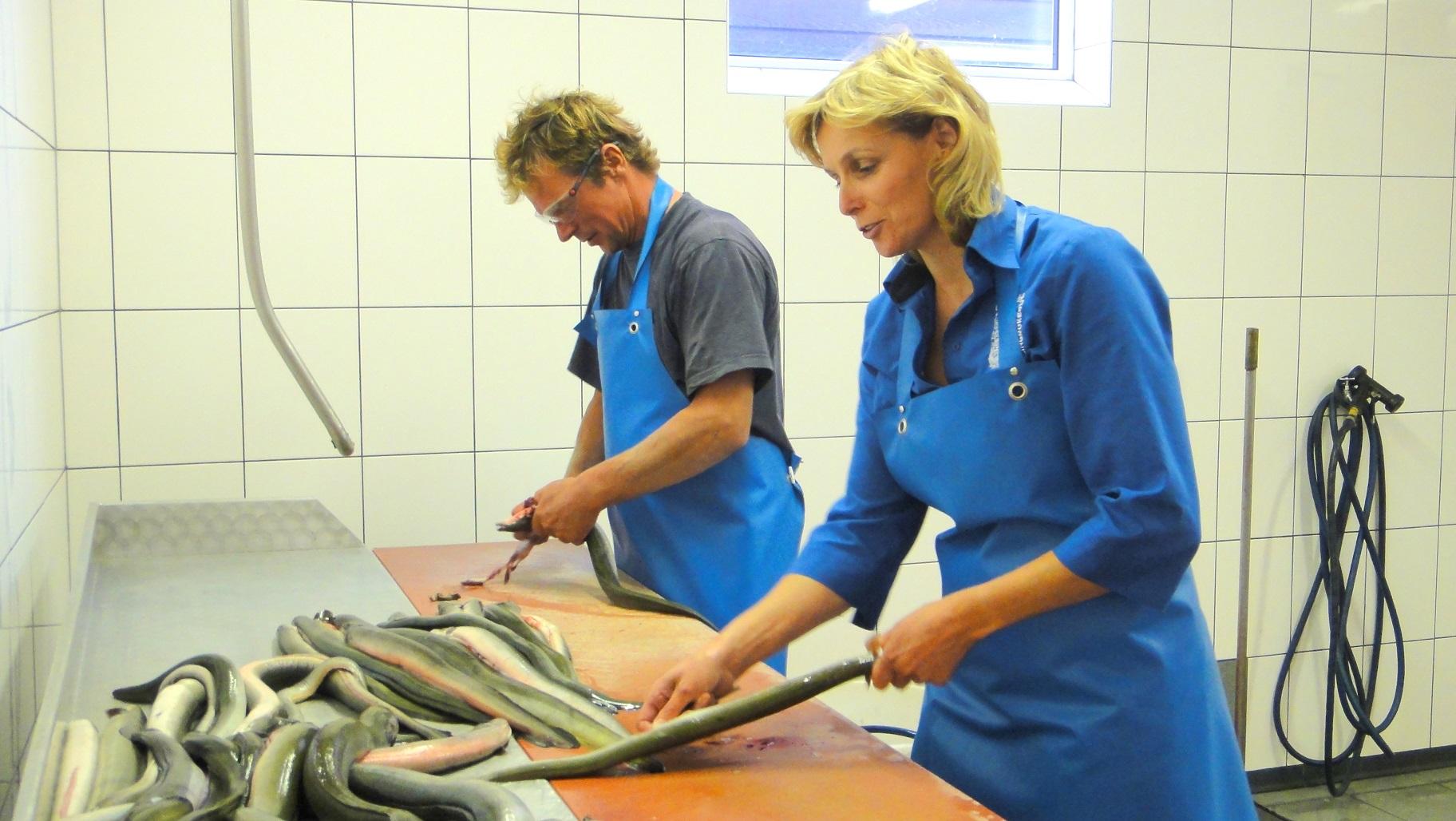 LNV publiceert regeling bedwelmen aal in de staatscourant
