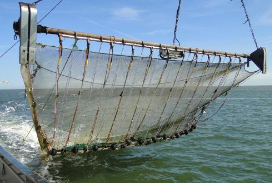 NetVISwerk luidt noodklok voor kleinschalige kustvisserij