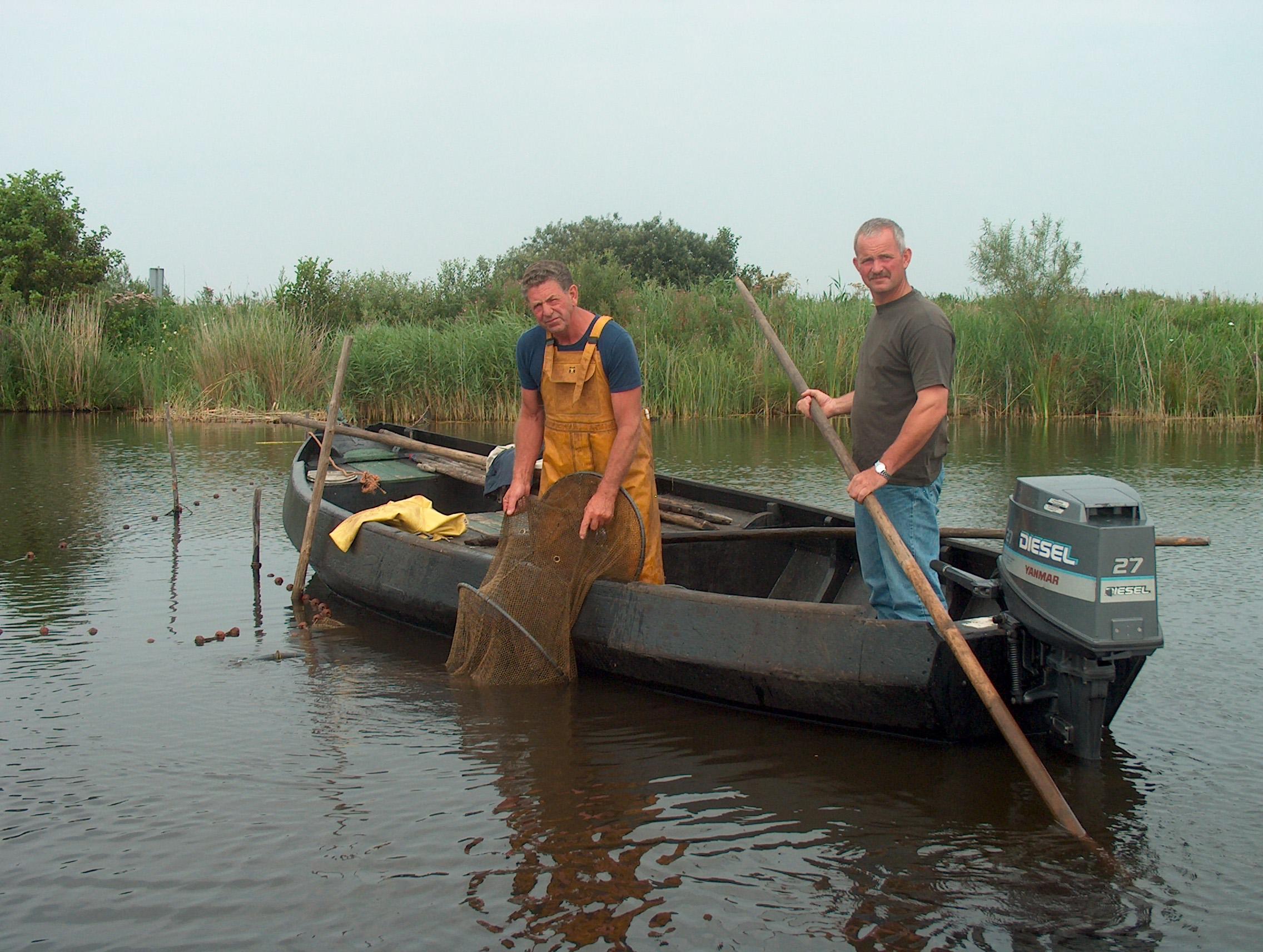 Bond in Noord-West Overijssel neemt initiatief voor uitwerken decentraal aalbeheer
