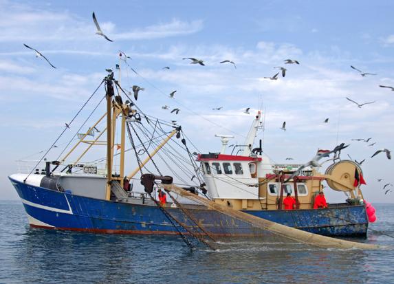 Minister Schouten stelt 15 miljoen beschikbaar voor innovatieve visserij